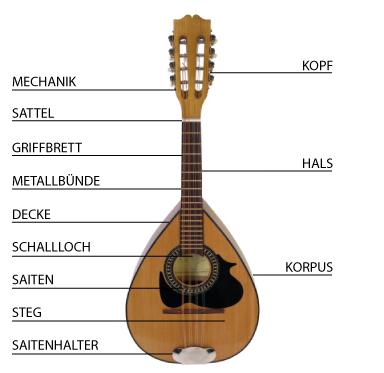 mandolineErklaert